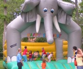 chateau gonglable elephant