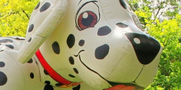 jeu gonflable dalmatien